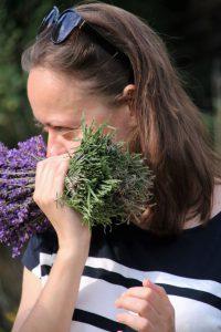 Świeże bukiety lawendy. O dziwo łodygi pachną nawet bardziej niż kwiaty
